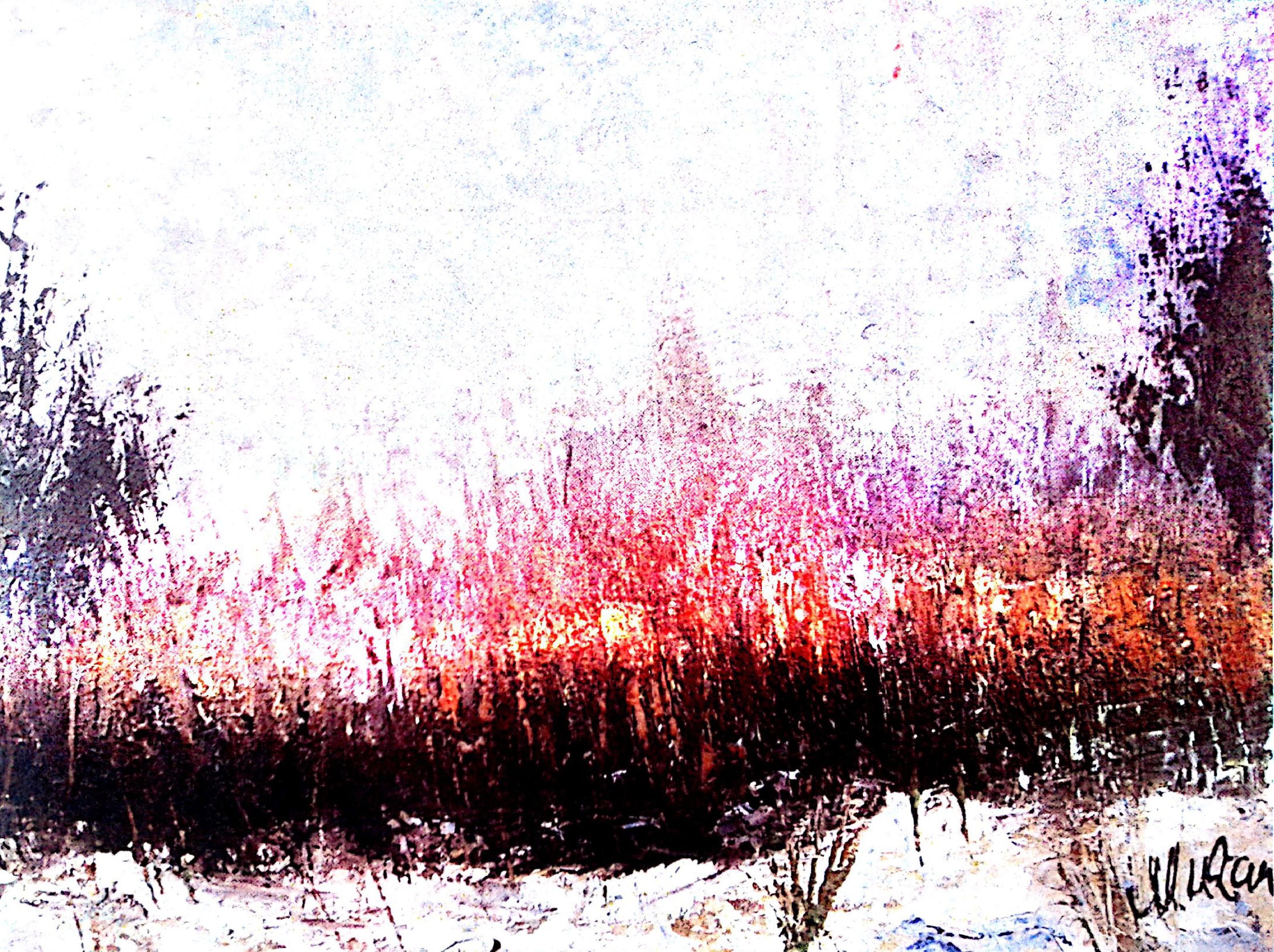 Osma samostalna izložba Zorana Mićanovića