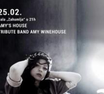 """U Zahumlju koncert """"Amy's House"""""""