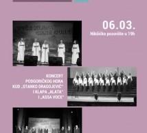 Novi koncert u Nikšićkom pozorištu