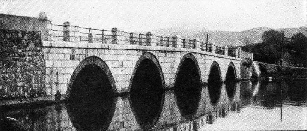 Novine-Vukov most 2