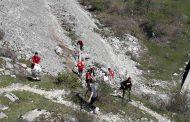 Velika akcija uklanjanja otpada sa obale Slanog jezera